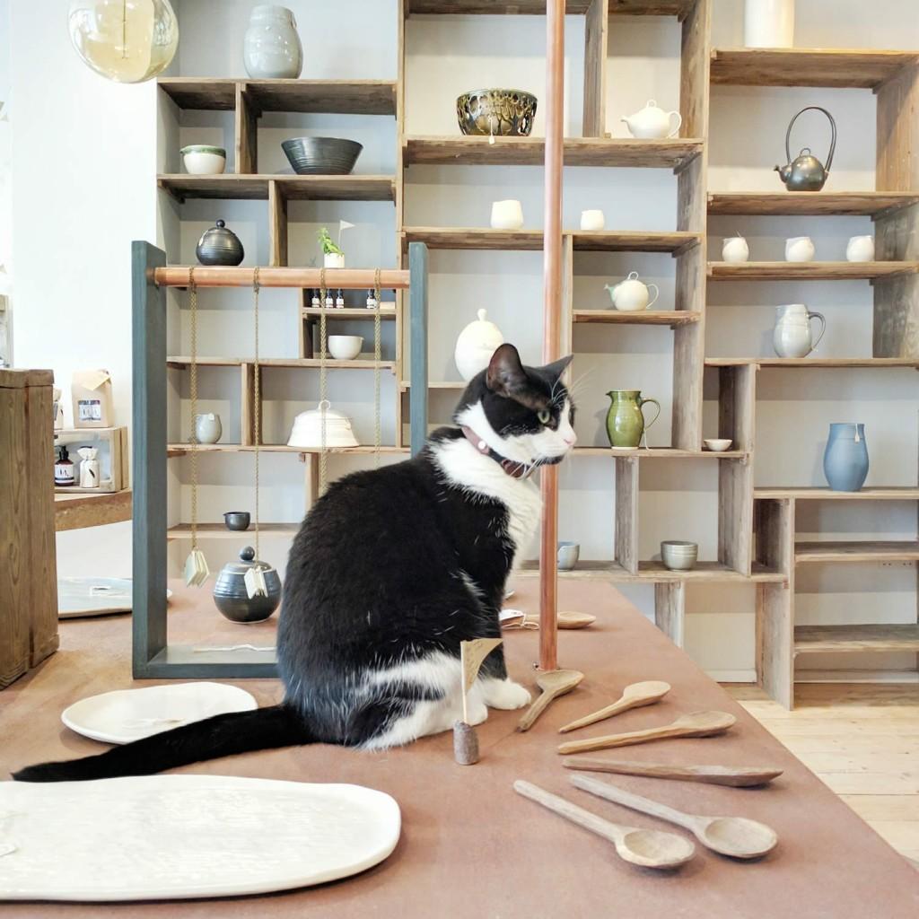 illyria-pottery-cat