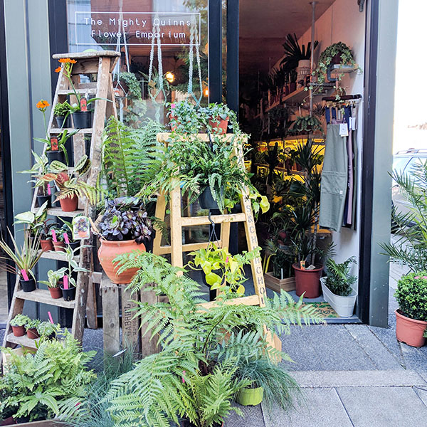 The Mighty Quinns Flower Emporium Bristol