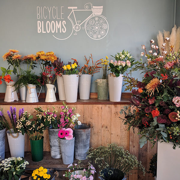Bicycle Blooms Oxford