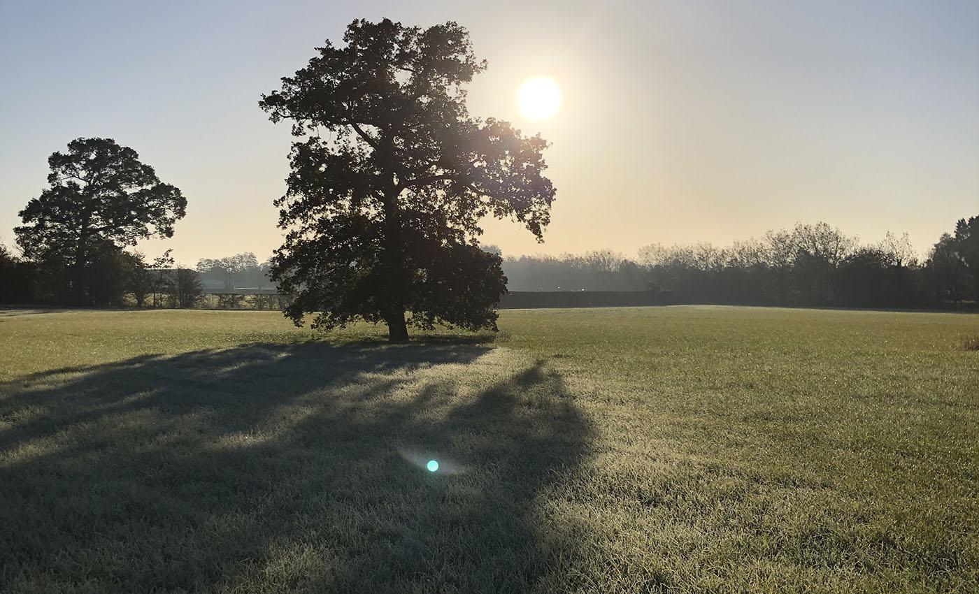 Wandering to Wonder Oxfordshire