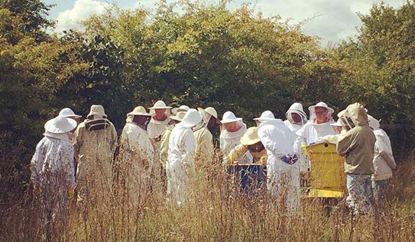 Warborough Honey